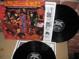 AN INTERNATIONAL HARDCORE - NUCLEAR BLAST - Pleasures in life - Hardcore -Thrash 2 LP