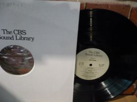 CBS Sound Library - North America - Wildlife - Whales - Dolphins - Auctions LP