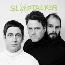 Sleeptalker - Big Dream - 2014 Portland Garage Rock + Hardcore Punk LP