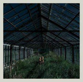 Foxing – Dealer - 2018 Emo Indie Rock - Clear Vinyl LP
