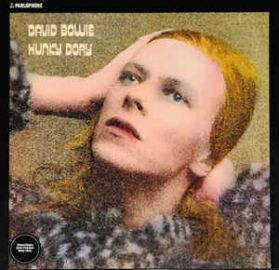 David Bowie - Hunky Dory - 1971 Glam Rock - Black Vinyl - Sealed  180 Grm LP RIP