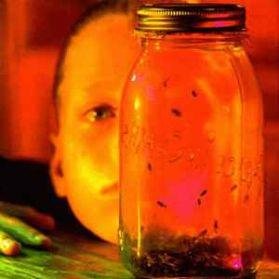 Alice In Chains - Jar Of Flies - 1993 Alt Grunge Rock - Sealed 180 Grm 2LP