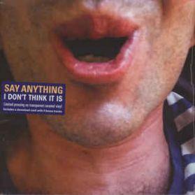 Say Anything – I Don't Think It Is - 2016 Alt Rock Pop Punk Ltd Ed Blue Vinyl LP