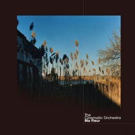 The Cinematic Orchestra - Ma Fleur - 2007 Folk + Soul Downtempo Genius 180 Gram 2LP